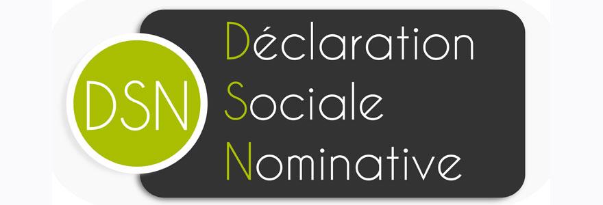 Déclaration Sociale Nominative
